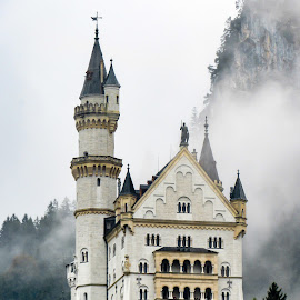Neuschwanstein Castle Bavaria  by Shari Linger - Buildings & Architecture Public & Historical ( ludwigs castle, bavarian alps, ancient places, bavaria, castles, germany, historical places )