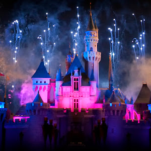 Disney Castle 2_01.JPG