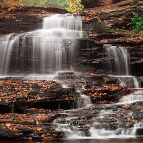 Onondaga Falls by Nicolas Raymond - Landscapes Waterscapes ( dreamy, seasonal, benton, stone, rock, vibrant, yellow, flow, travel, leaves, ricketts glen, colour, colourful, nature, fluid, autumn, foliage, movement, motion, black, orange, colors, white, forest, tourism, onondaga, somadjinn, united states, colours, environment, touristic, season, scene, natural, stream, america, colorful, waterscape, rocky, vivid, waterfall, beauty, landscape, usa, pretty, epic, nicolas raymond, state park, long exposure, rocks, streaming, water, flowing, green, beautiful, cascades, pennsylvania, scenic, environmental, red, color, fall, background, falls, brown, cascading, scenery, stones, river )