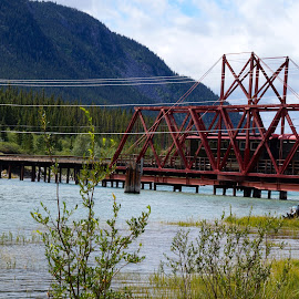 Train treacle in Alaska by Lynn Andrasko - Buildings & Architecture Bridges & Suspended Structures