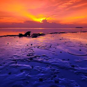 Kuala Perlis by Asrul CikguOwn - Landscapes Sunsets & Sunrises