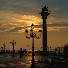 Golden Venice morning by Bojan Porenta - City,  Street & Park  Street Scenes ( venezia, italia, venice, sunrise, morning, italy, city square, golden )