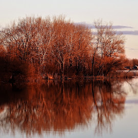 Reflective Moment  by Kathy Woods Booth - Landscapes Waterscapes ( water, mirrored reflections, waterscape, trees, reflections, riverscape, river )
