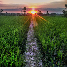 Start by Robins Selalu Ada - Instagram & Mobile Android ( mobilography, sunset, landscape, sun )