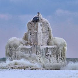 Snowbird Memory 20 by Terry Saxby - Nature Up Close Water ( canada, terry, lighthouse, goderich, ontario )