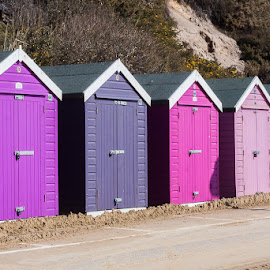 Beach huts by Judith Matthews - Buildings & Architecture Other Exteriors ( colour, purple, exterior, beach huts, buildings, pink, more than one )