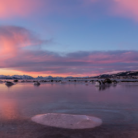 Arctic sunrise colors by Benny Høynes - Landscapes Sunsets & Sunrises ( purple, colorful, ice, pink, arctic, sunrise, norway,  )