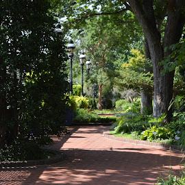 by Stacy Brown-Austin - City,  Street & Park  City Parks