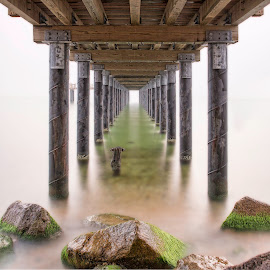 Under the Pier by Buzz Covington - Buildings & Architecture Bridges & Suspended Structures ( pier, buzz covington photography, 2015, fine art, martha's vineyard, black and white )