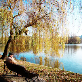 by Photo Creations - Landscapes Waterscapes ( water, tree, lake, old man, landscape, colours )