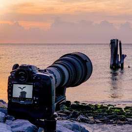 Photographing Ospreys II by Mike Parker - Artistic Objects Technology Objects
