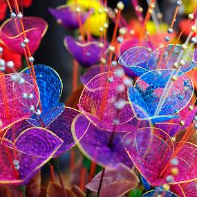 Flowers by Tridibesh Indu - Flowers Flower Arangements ( colourful, surajkund_mela, surajkund, flowers, colours,  )