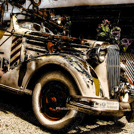WEDDING CAR FROM 1920 by Maks Erlikh - Transportation Automobiles ( car, old car, wedding car, car feom arizona )