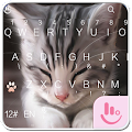 App TouchPal Cats Keyboard Theme APK for Kindle