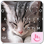 Download Android App TouchPal Cats Keyboard Theme for Samsung