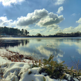A Crisp Day at the Lake by James Holdsworth - Landscapes Waterscapes ( clouds, pureice, reflection, snow, lake, pwcmovinganimals-dq )