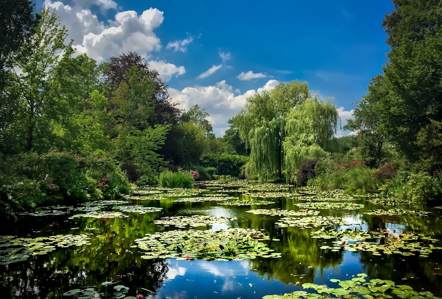 Monet's Garden by Mike Hotovy - Instagram & Mobile iPhone