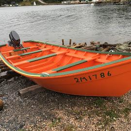 Orange Boat by Victor Kalimuthu - Landscapes Travel ( orange, small boat, harbour, shoreline, seascape, boat )