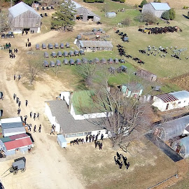 Amish Wedding by Mike Robey - Wedding Other ( amish, drone, buggy, wedding, aerial )