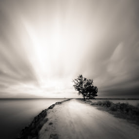 Stand by Firman Hananda Boedihardjo - Landscapes Waterscapes