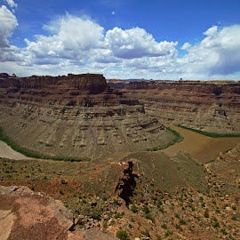 Canyonlands Confluence by Justin Giffin - Landscapes Deserts ( desert, canyonlands, utah, national parks, rivers, landscape, canyons, confluence )