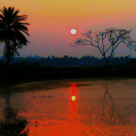Sunset by Prince Frankenstein - Instagram & Mobile Android ( reflection, mobile photos, sunset, trees, pond )
