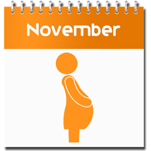 Download Pregnancy Calculator APK