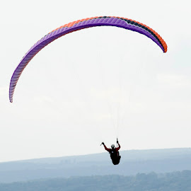 Hang Gliding at Window Roc by Steven Faucette - Sports & Fitness Other Sports ( mountains, tennessee, hang gliding )