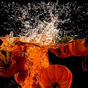 punkin chunkin by Amelia Falk - Public Holidays Halloween ( studio, water, orange, pumpkin, green, floatation, holiday, holloween, color, fall, chunking, all hallos eve, squash, punkin, pumpkins, halloween )