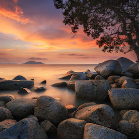 A Tree on Rocks by Bobby Bong - Landscapes Beaches ( canon, tree, west kalimantan, sunset, beach, seascape, singkawang, rocks, relax, tranquil, relaxing, tranquility )
