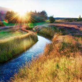 Sunrise in Heaven by Gema Goeyardi - Landscapes Sunsets & Sunrises ( lake, sunrise, new zealand, river )