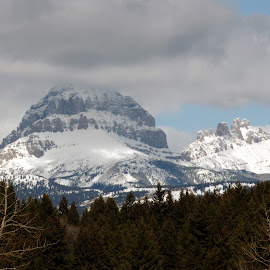 Alberta view by Giselle Pierce - Landscapes Mountains & Hills ( hills, mountain, snow )