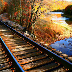 Walking the Rails by Travis Houston - Transportation Railway Tracks ( railroad tracks, nature, fall colors, railway, railroad, scenery )