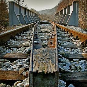 by Mladjan Pajkic - Transportation Trains