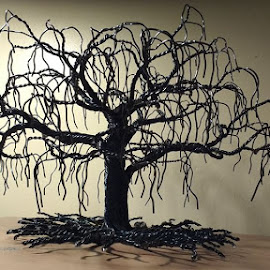 Wire black Willow by Vitor Diecenes - Artistic Objects Other Objects
