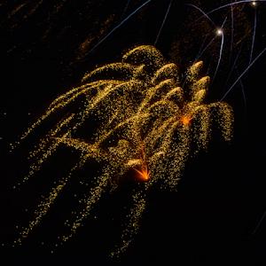 8347 jpg Firework Aug -18-1.jpg