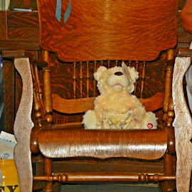 Bear On A Chair by Sandy Stevens Krassinger - Artistic Objects Furniture ( chair, teddy bear, wood, artistic objects, furniture, ricking chair,  )