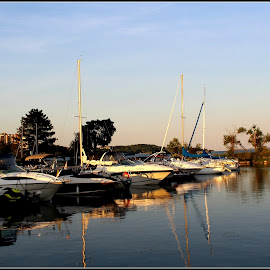 Sunset at the Bay by Maritza Féliz - City,  Street & Park  Vistas ( water, reflection, waterscape, sunset, boats )