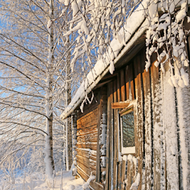 Forgotten by Mia Ikonen - Buildings & Architecture Other Exteriors ( old, winter, cold, finland, sauna )