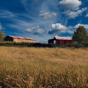 by Cheryl Hudnall Kincaid - Landscapes Prairies, Meadows & Fields