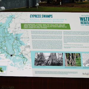 Cypress Swamps - Wedell-Williams Aviation & Cypress Sawmill Museum