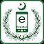 ePakistan