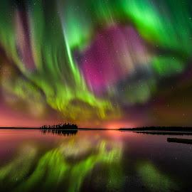 Aurora Borealis In Elk Island by Joseph Law - Landscapes Starscapes