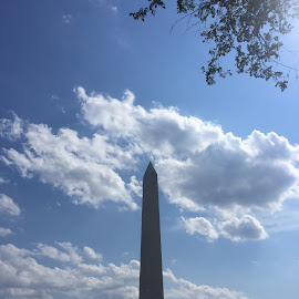 Sunny Serenity by Arkadi Zhanov - Buildings & Architecture Statues & Monuments ( clouds, patriotic, washington dc, architecture, summertime )