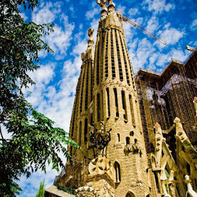 Sagrada Família by Alex Zagorskij - Buildings & Architecture Statues & Monuments