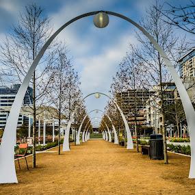Arches of Klyde Warren Park by Fitz C - City,  Street & Park  City Parks