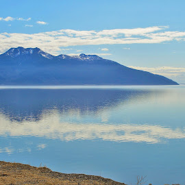 Turnagain Arm by Patricia Phillips - Landscapes Travel ( alaska turnagain-arm cook-inlet )
