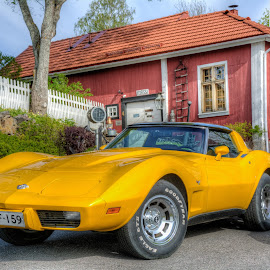 Yellow by Bojan Bilas - Transportation Automobiles ( corvette, finland, yellow,  )
