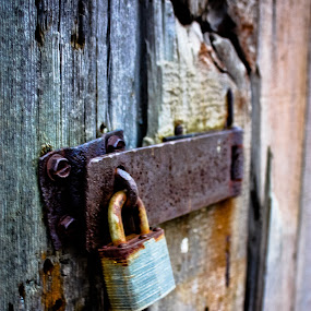 Locked Up by Alena Purvis - Buildings & Architecture Architectural Detail ( wood, barn, lock, rusty, rustic )