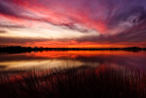 Long Island Special by Linda Karlin - Landscapes Sunsets & Sunrises ( sky, sunset, landscape )